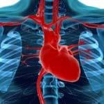 Insuficiência Mitral será o segundo tema da Jornada de Atualização Ecocardiográfica